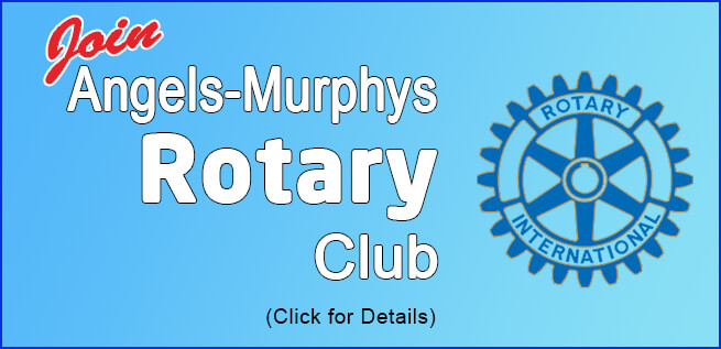 join rotary today